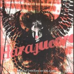 Raven Revolt 02